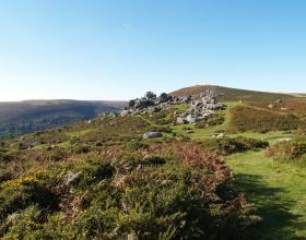 Bonehill, Dartmoor