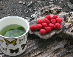 Herb tea & raspberry communion